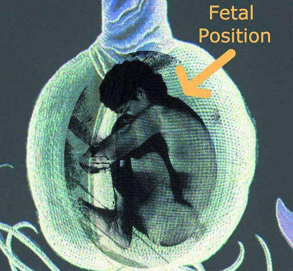 posicion-fetal