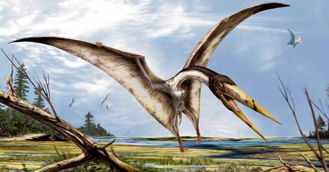 Como-los-dinosaurios-aprendieron-volar