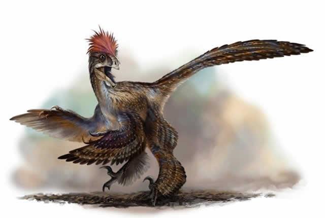 dinosaurios-piel-suave