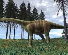 orina-dinosaurio